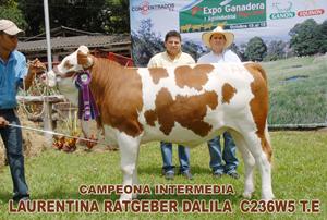 CAMPEONA INTERMEDIA RESERVADA BUGA 2010